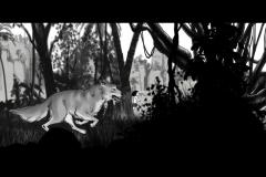 Jonathan_Gesinski_The-Jungle-Book_Mowgli-run_Storyboards_0039