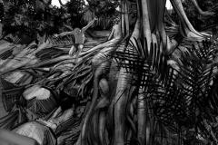 Jonathan_Gesinski_The-Jungle-Book_Mowgli-run_Storyboards_0074