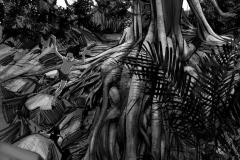Jonathan_Gesinski_The-Jungle-Book_Mowgli-run_Storyboards_0075