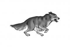 Jonathan_Gesinski_The-Jungle-Book_Mowgli-run_Storyboards_0128