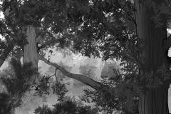 Jonathan_Gesinski_The-Jungle-Book_four_legs01_Storyboards_0010