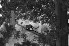 Jonathan_Gesinski_The-Jungle-Book_four_legs01_Storyboards_0012