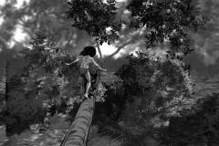 Jonathan_Gesinski_The-Jungle-Book_four_legs01_Storyboards_0020